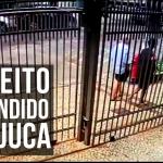 Tijuca Presente apreende suspeito de roubar idoso que fraturou o ombro durante o assalto